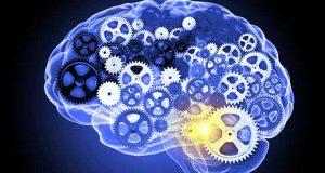Εγκέφαλος nootropics