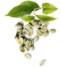 Πράσινος Καφές
