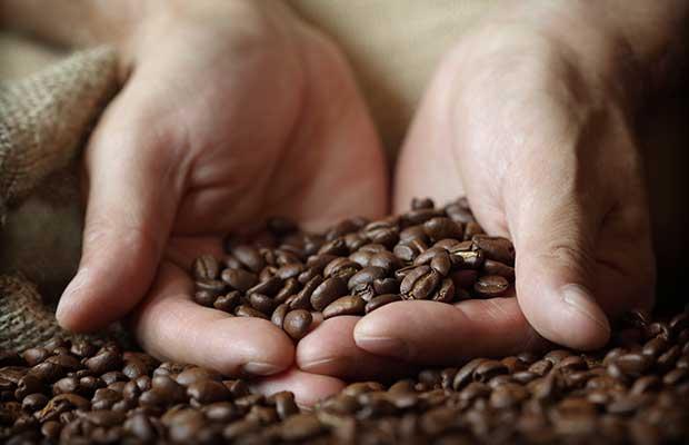 Σκόνη Καφέ