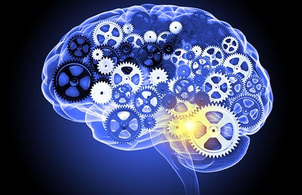 Λειτουργία Εγκεφάλου